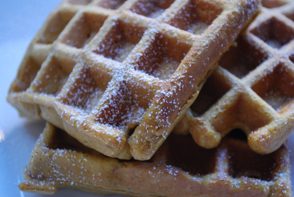 Gingerbread Waffles Recipe | Cake and Allie