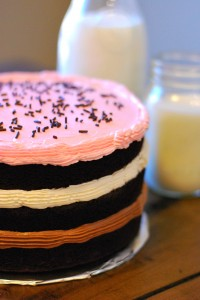 Inside-Out Neapolitan Cake